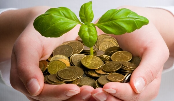 Как взять кредит в Россельхозбанке на лпх