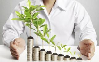 Венчурные инвестиции: классификация, венчурные фонды России
